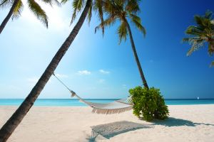 sky landscape hammocks palm trees beach sand sea