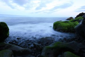 sky rock coast nature horizon sea moss