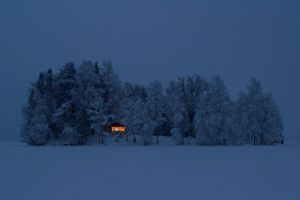 snow cabin forest