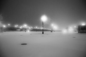 snow monochrome winter night lights