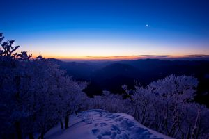 snow nature trees landscape sky sunset winter