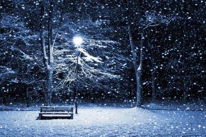 snow trees winter bench lantern christmas cold
