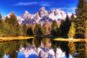 snowy mountain nature pine trees reflection lake grand teton national park