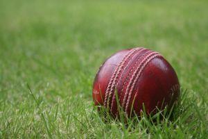 sports balls cricket