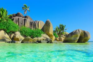 stones landscape nature sea sand tropical beach palm trees