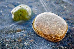 stones macro nature water