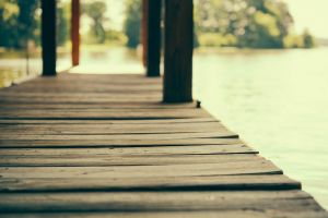 summer planks wooden surface lake depth of field pier