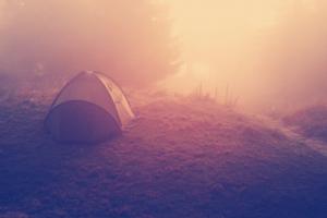 sun sunset camping mist nature