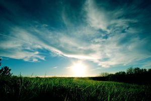 sunlight green clouds landscape sky blue plants