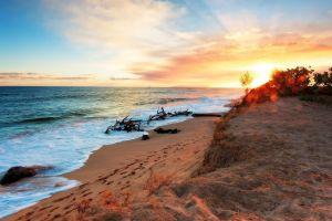 sunlight nature beach horizon sky sea