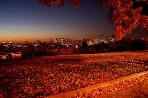 sunset fall nature