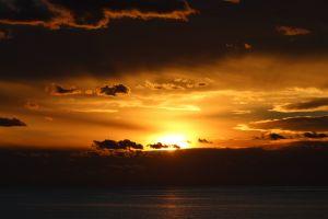 sunset sea sunlight nature australia water