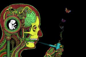 surreal skull drugs pipes artwork butterfly rastafari smoking h. r. giger psychedelic