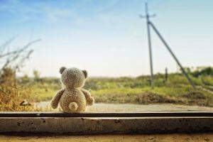 teddy bears outdoors toys