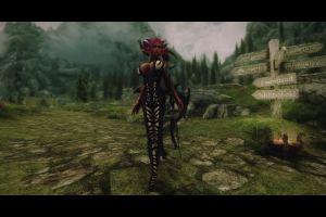 the elder scrolls v: skyrim big boobs zebras video games