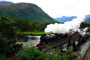 train nature vehicle landscape locomotive valley trees bridge steam locomotive
