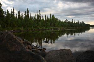 trees lake landscape karelia
