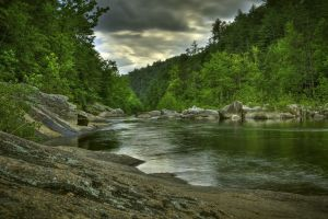 trees landscape river hdr nature