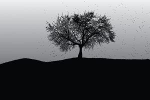 trees monochrome landscape