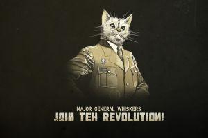 typography uniform cats artwork