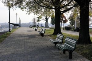 urban city bench trees