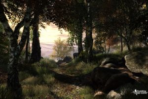 video games the vanishing of ethan carter forest