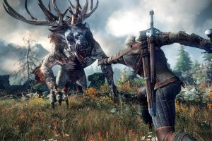 video games the witcher the witcher 3: wild hunt