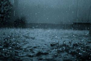 water drops rain water dark