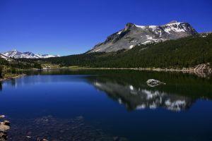 water reflection nature landscape