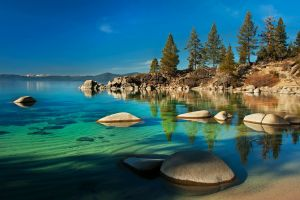 water stones trees nature