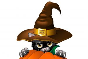 white background simple background fantasy art witch hat cats pumpkin yellow eyes