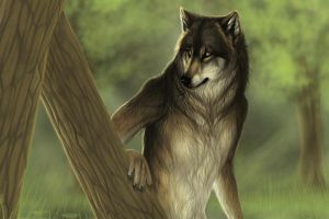wolf anthro fantasy art animals
