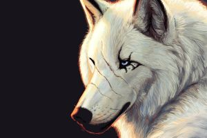 wolf digital art artwork animals