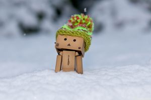 woolly hat danbo snow