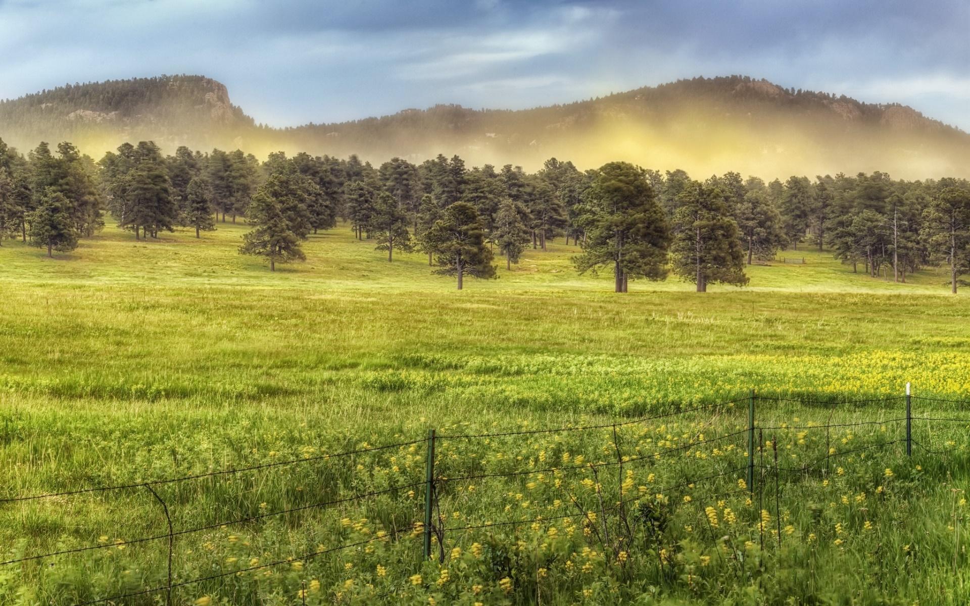 fence landscape green trees