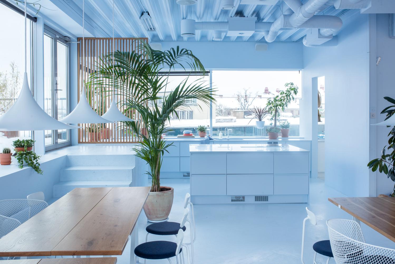 interior architecture interior design