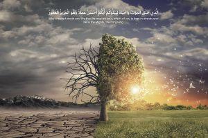 allah religious religion qur'an