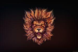 animals artwork lion