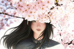 anime cherry blossom anime girls