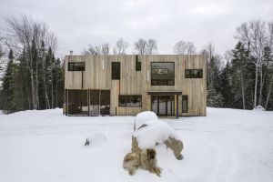 architecture modern pet forest dog house snow
