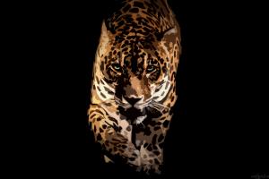 artwork animals jaguar simple background artwork big cats