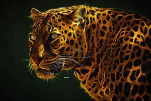 big cats leopard animals photomontage