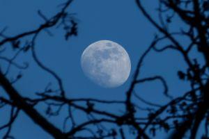 blue moon outdoors sky