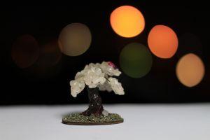 bokeh lights indoors blurred