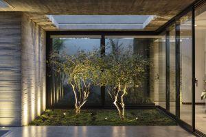 building plants house