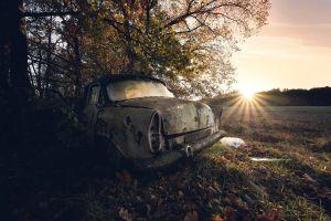 car wreck sunlight vehicle trees