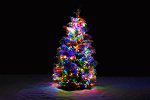 christmas tree holiday snow christmas colorful