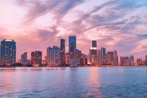 city sunset pink miami lights cityscape city lights evening building calm