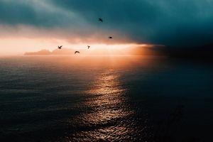 clouds sunlight landscape sea birds nature