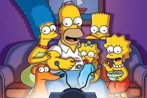 colorful tv series the simpsons cartoon